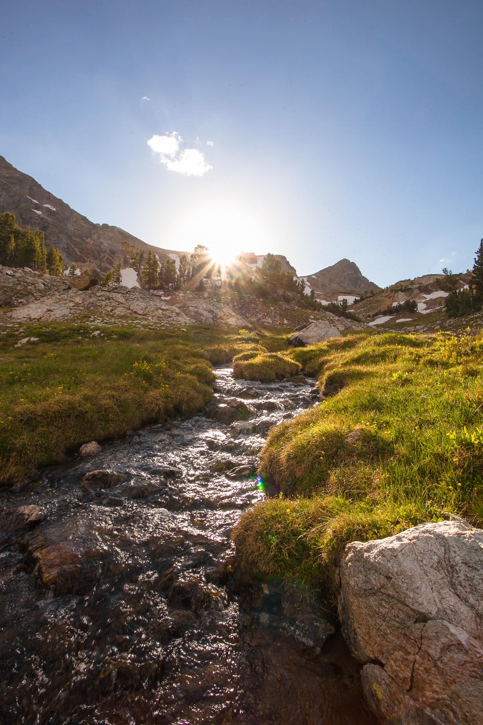 Alpine Sunburst